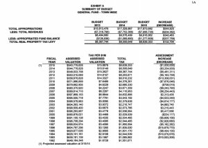 2015 Approved Budget 1A
